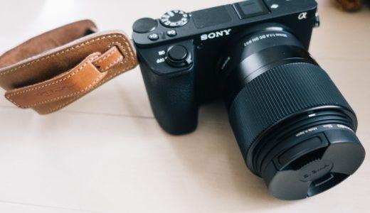犬とデジタル一眼カメラα6500【SONY】写真撮影サンプル