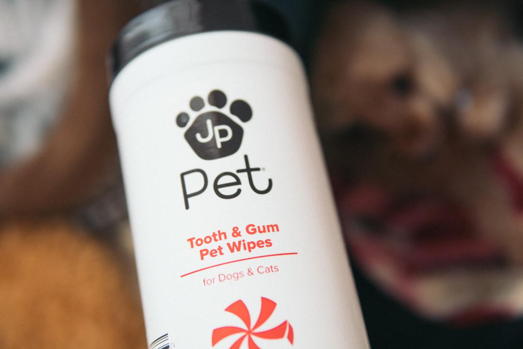 おすすめの犬用歯磨きシート